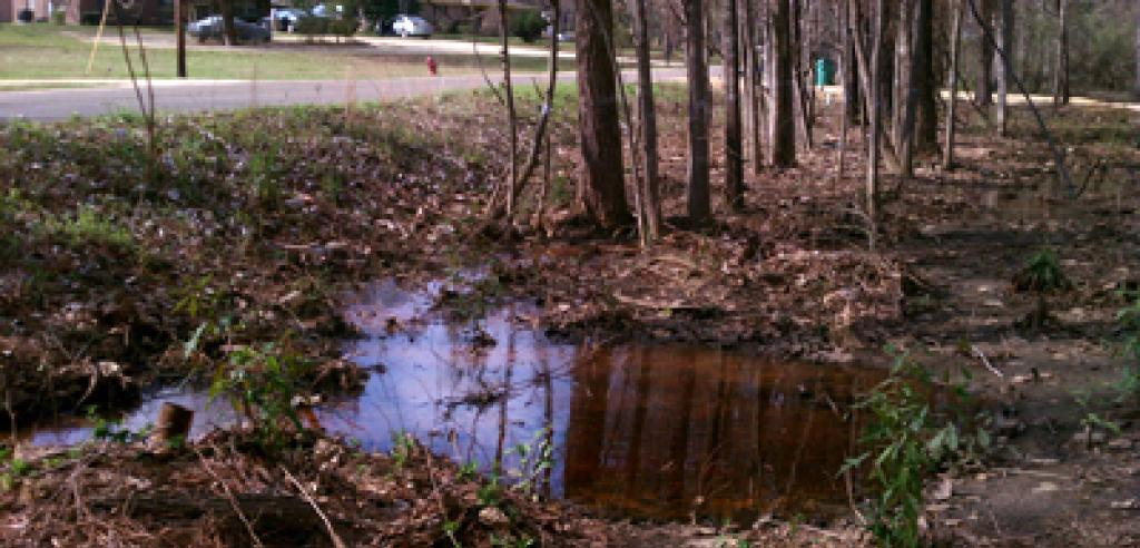 Poor Alabama Residents Fighting For Sewage and Wastewater